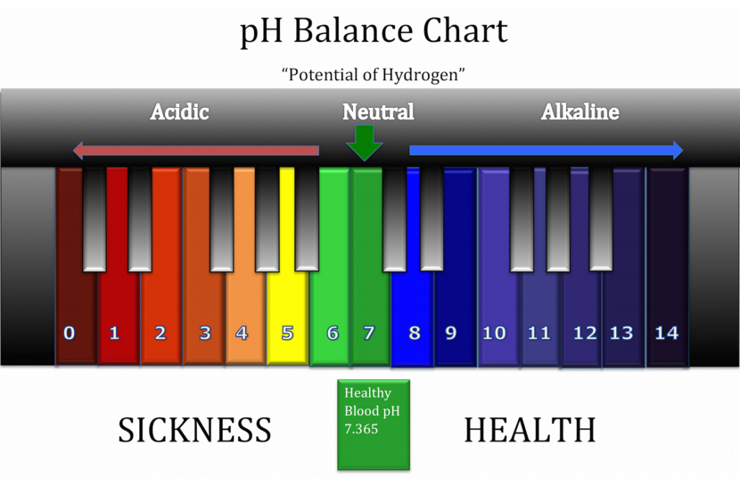 Alkalize your body – food pH